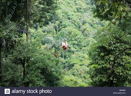 Above The Canopy by Riding A Zipline Above The Rainforest Canopy La Fortuna