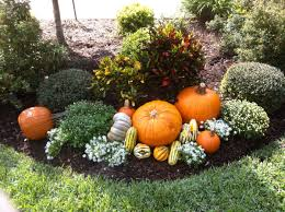 Best Santa Rosa Pumpkin Patch by How To Decorate Your Yard For Autumn Entertaining