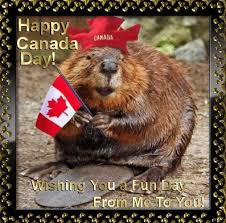 Canada Day Meme - 30 happy canada day greetings quotes and meme in 2017