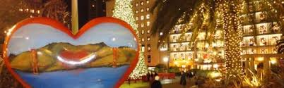 christmas lights san francisco holiday lights tour san francisco love tours san francisco love