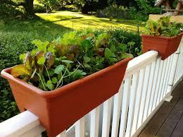 adjustable railing planter landscape and plants best with