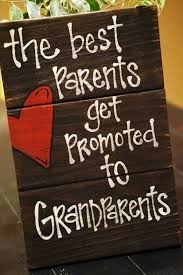 gift ideas for new grandparents rainforest islands ferry
