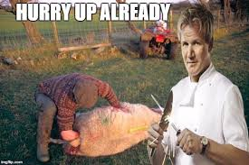 Hells Kitchen Meme - hells kitchen meme imgflip