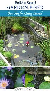 How To Make A Patio Pond Advice For Starting A New Garden Pond Empress Of Dirt