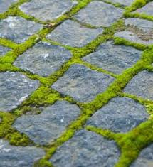 Different Types Of Garden - what are the different types of garden paving stones