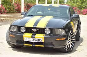 Black Mustang Grey Stripes 2005 Gt Options Package