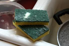 kitchen sponge the real dirt on kitchen sponges here s the way to clean magic 92 5
