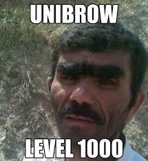 Bushy Eyebrows Meme - 196 best eyebrow fail images on pinterest eyebrow fail ha ha and
