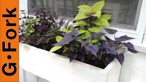 Window Box For Herbs Planting A Window Flower Box Gardenfork Youtube