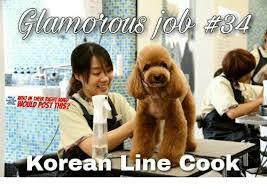 Line Cook Memes - woud post this orean line cook meme on sizzle