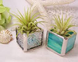 Good Desk Plants Stained Glass Boxes Planters Plants And Glass