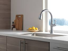 delta cassidy single handle pull out kitchen faucet 4197 rb dst single handle pull kitchen faucet with shieldspray 9197 ar
