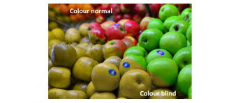 Is Being Blind A Disability Colour Discrimination Chuffed Non Profit Charity And Social