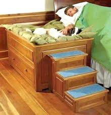 Bunk Bed For Dogs Bunk Bed Plans Pallet Bunk Bed With Stairs Bunk Bed