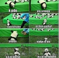 Memes De Pandas - ni pedo la vida sigue xdxdxdd humor panda qxoshetamalendhazecaio7u7