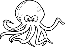 new octopus coloring page inspiring coloring d 1678 unknown