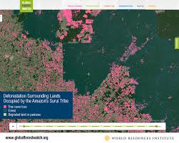 Amazon Maps 9 Maps That Explain The World U0027s Forests World Resources Institute