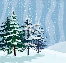 snow falling on pine trees in the wilderness royalty free clip