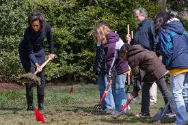 the obama white house vegetable garden the modern gardener