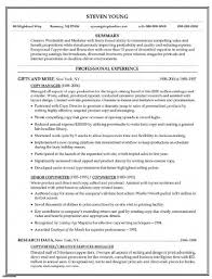 Copywriter Resume Template Copy Of Resume Resume Templates