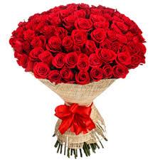 roses flowers product image 488 jpg
