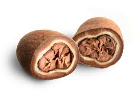 cocoa puro kakawa cocoa beans pure whole bean chocolates