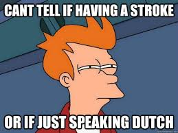 Dutch Memes - cant tell if having a stroke or if just speaking dutch futurama