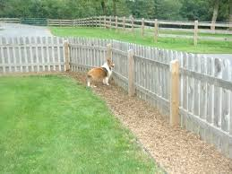 Backyard Fences Ideas Backyard Fencing Ideas For Dogs Backyard Vinyl Fence Ideas