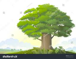 majestic tree middle plain field stock vector 231905188