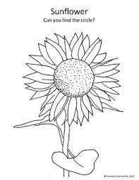 fall harvest coloring pages apple sunflower pumpkin leaves