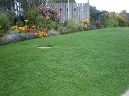 how much does artificial turf cost crafts home