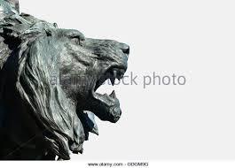roaring lion statue venice lion bronze statue stock photos venice lion bronze statue