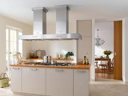 classy modern kitchen decoration using mount ceiling rectangular