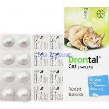 Obat Cacing Kucing Di Petshop obat cacing drontal plus for cat per tablet dc1 toko hewan