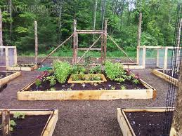 Vegetable Garden Landscaping Ideas Organic Vegetable Gardens Landscaping Gardening And