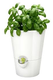 15 indoor herb garden ideas kitchen herb planters