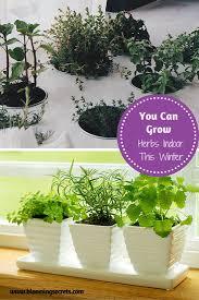 214 best images about garden tips u0026 tricks on pinterest gardens
