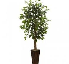 decorative trees indoor decor
