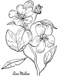 7 floral coloring pages graphics fairy coloring and