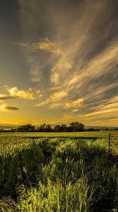 download wallpaper 720x1280 field grass fence sky summer