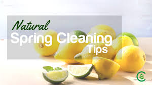 spring cleaning tips natural spring cleaning tips cedarcide