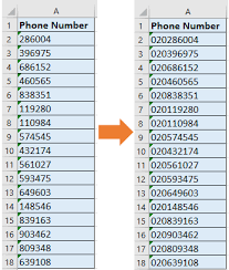 us area code list csv how to add country area code to a phone number list in excel