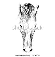 horse face stock images royalty free images u0026 vectors shutterstock