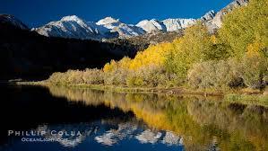 bishop creek canyon fall colors u2013 natural history photography blog
