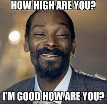 Stoner Meme - how high are you ig stoner aumor i m good howare you how high