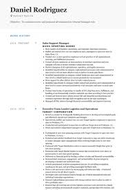Best Team Lead Resume Example by Sales Support Resume Samples Visualcv Resume Samples Database