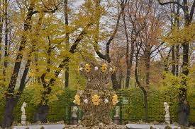 Summer Garden St Petersburg Russia - slideshow 1948 19 fall colors of grand parterre in letny sad