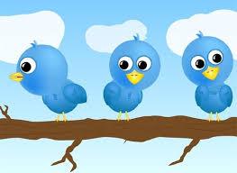 tweety vector pictures free free vector download 10 free vector