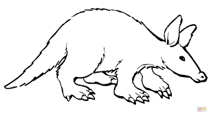 aardvark coloring page free printable coloring pages