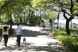 Best Public Gardens by Best Nyc Parks For Walking Having A Picnic And Playing Sports